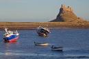 Lindisfarne Castle 3. Jan '19.