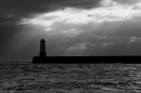 Berwick 'lighthouse' 2. Feb '20.